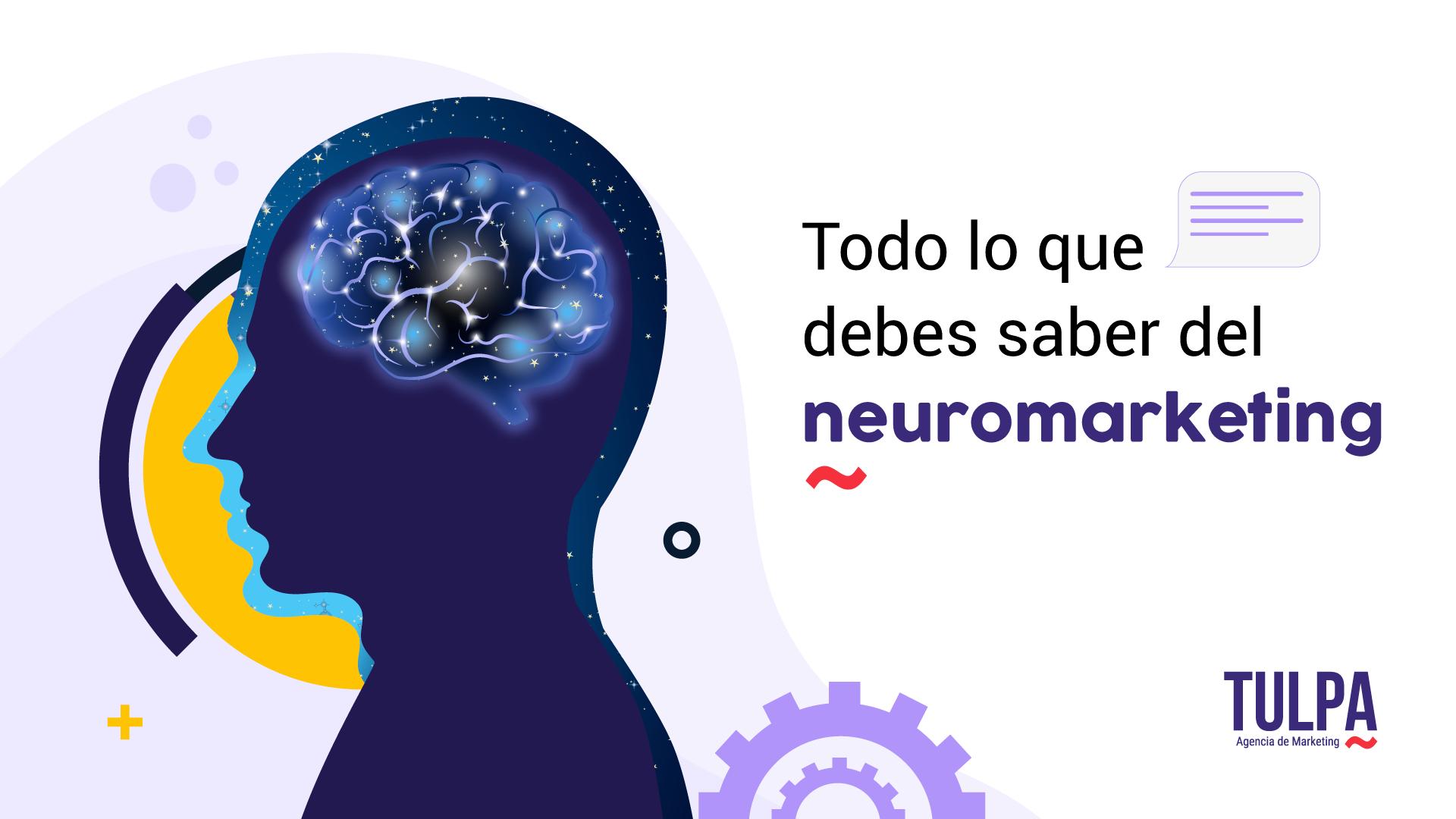 Todo lo que debes saber del Neuromarketing.